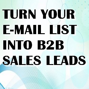 turn email list into b2b sales